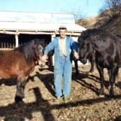 bardigiani-capenardo-1983