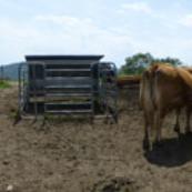 cooperativa-agricola-monte-capenardo